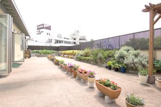 四季折々の草花が咲き誇る花壇スペースと、季節の野菜が収穫できる菜園スペースがあります